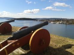 Cannon II