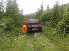 Unloading the brush cutters