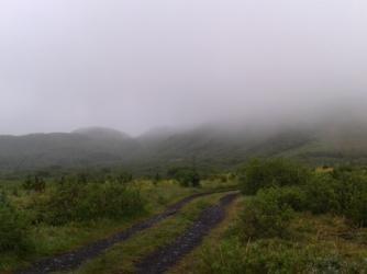 Rainy landcape