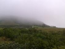 Rainy landscape #2